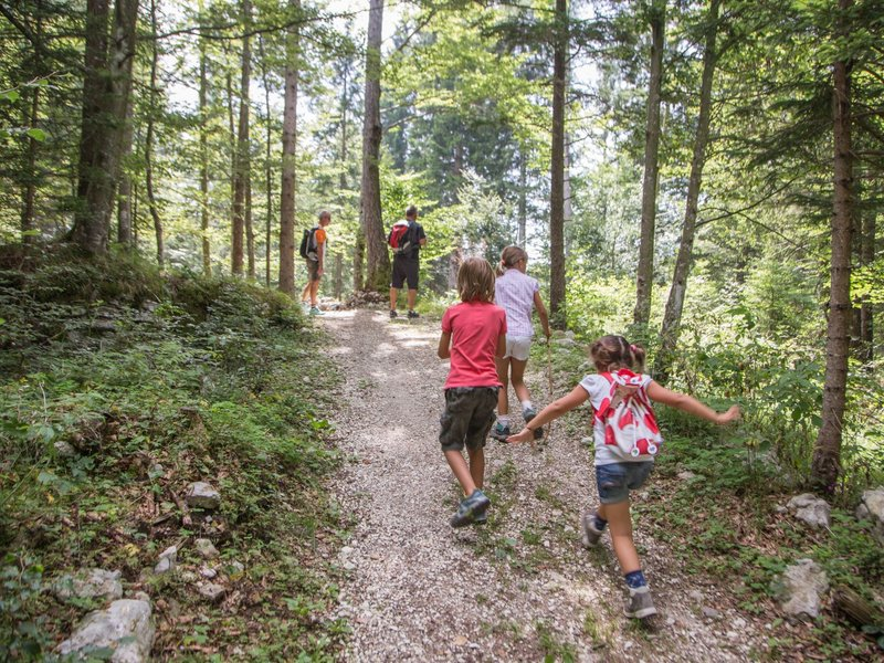 Alpe Cimbra Familienwanderung (c) Gober