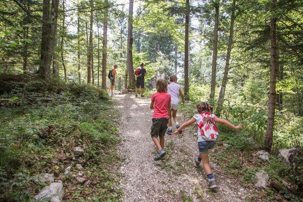 Familienwanderung auf der Alpe Cimbra, Italien (c) Gober
