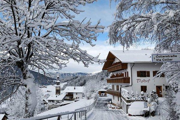 Töglhof Winter