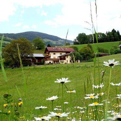 Ganoihof eingebettet von Wiesen und Feldern