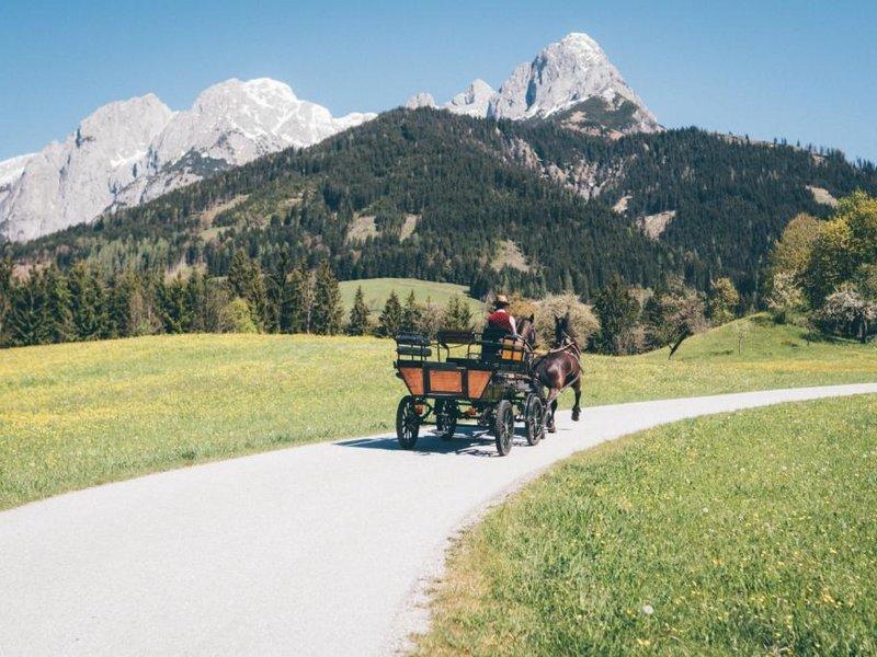 Kutschfahrt Landschaft Werfenweng im Sommer