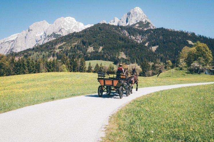 Landschaft Werfenweng im Sommer Kutschfahrt