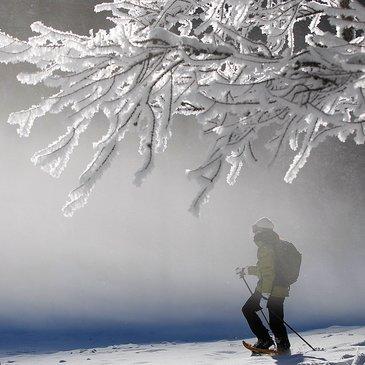 Schneeschuhwanderung-©PMLibertini