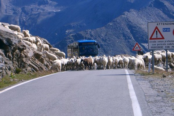 Wandern Gran Paradiso Nationalpark