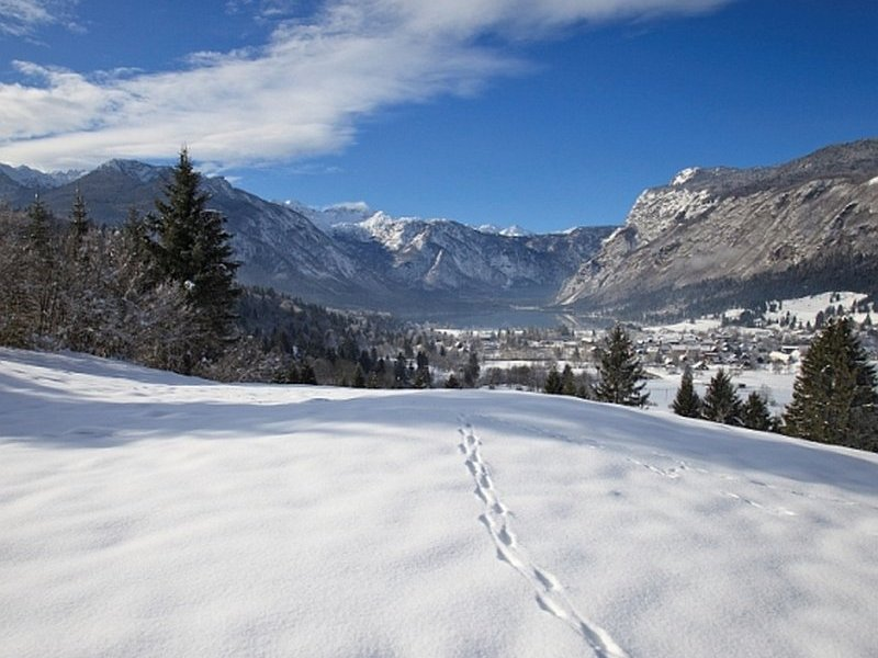 Winter in Bohinj