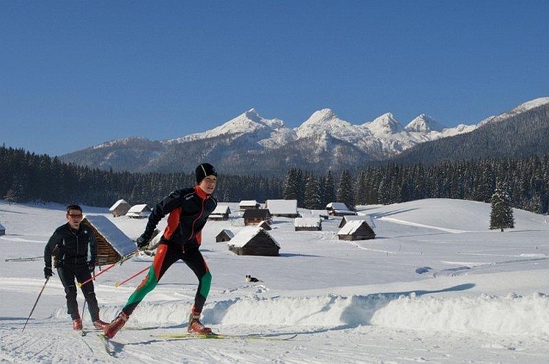 Langlauf skating