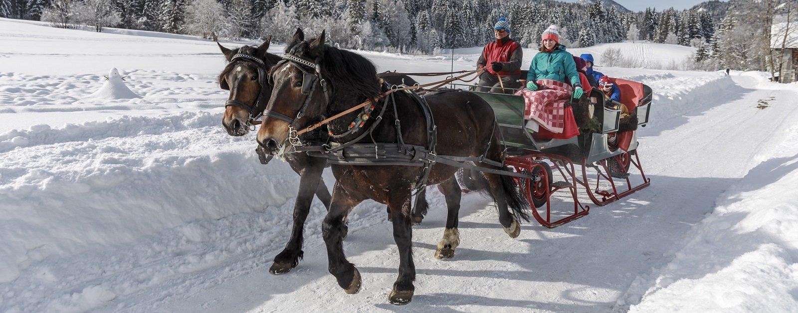 Pferdeschlittenfahrt am Weissensee