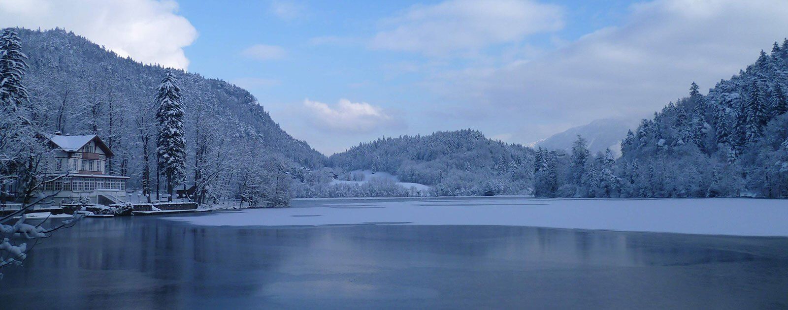 Thumsee Winter