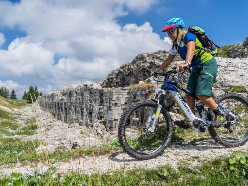 E-Bike Downhill Alpe Cimbra (c) Gober