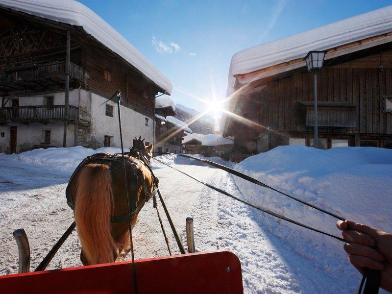 Pferdeschlittenfahrt in Pfelders