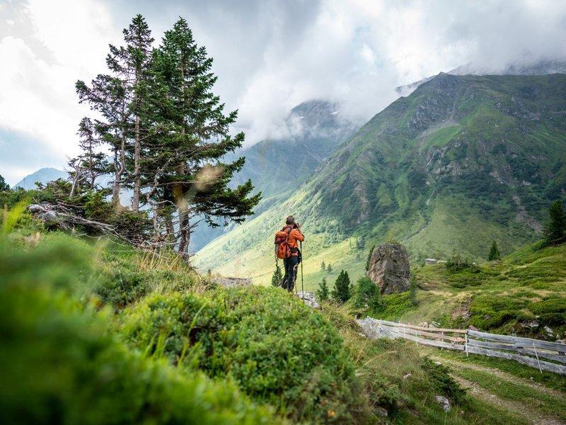 Wandern im Nationalpark Hohe Tauern (c) Dietmar Denger