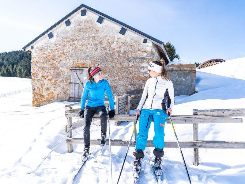 (c) Alpe Cimbra