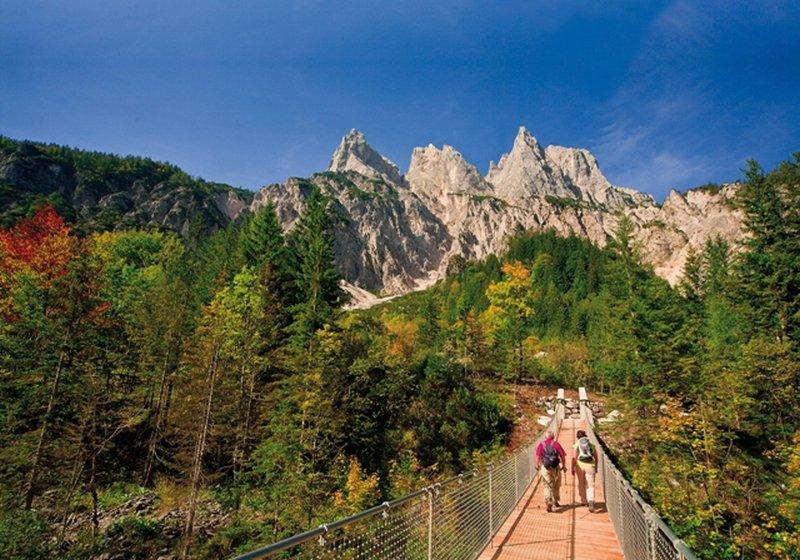 Hängebrücke im Nationalpark Berchtesgaden (c) Berchtesgadener Land Tourismus GmbH